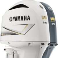 yamaha f350c